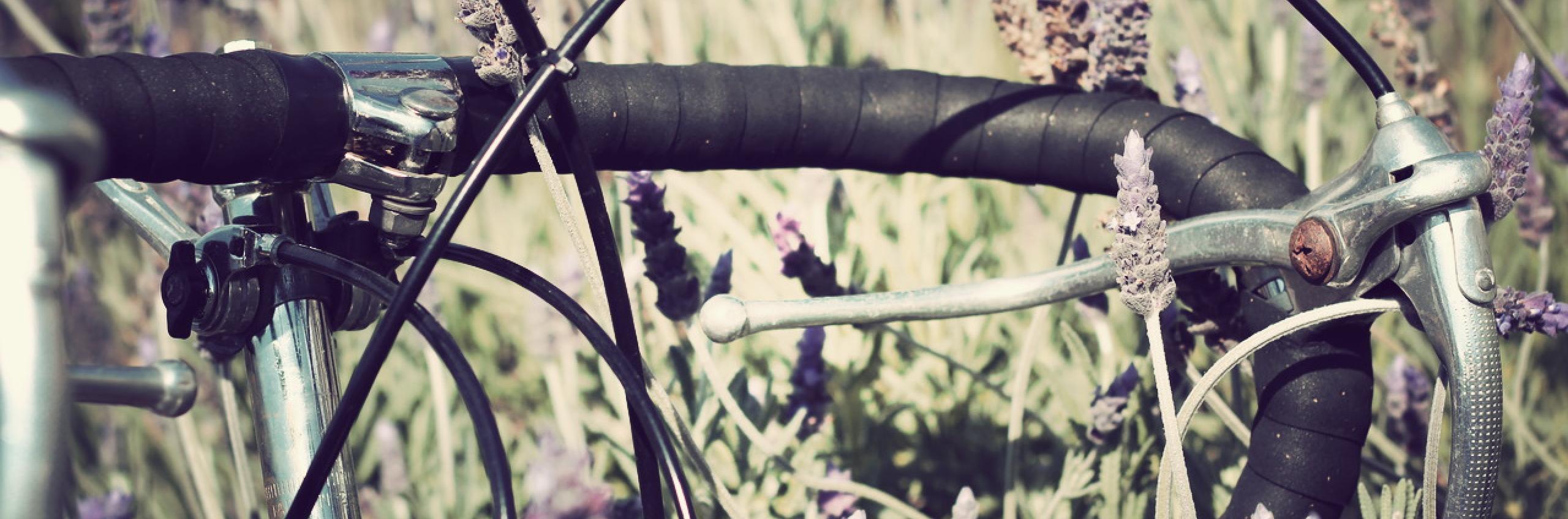 Biking Hvar - A setting so pretty, it looks fake