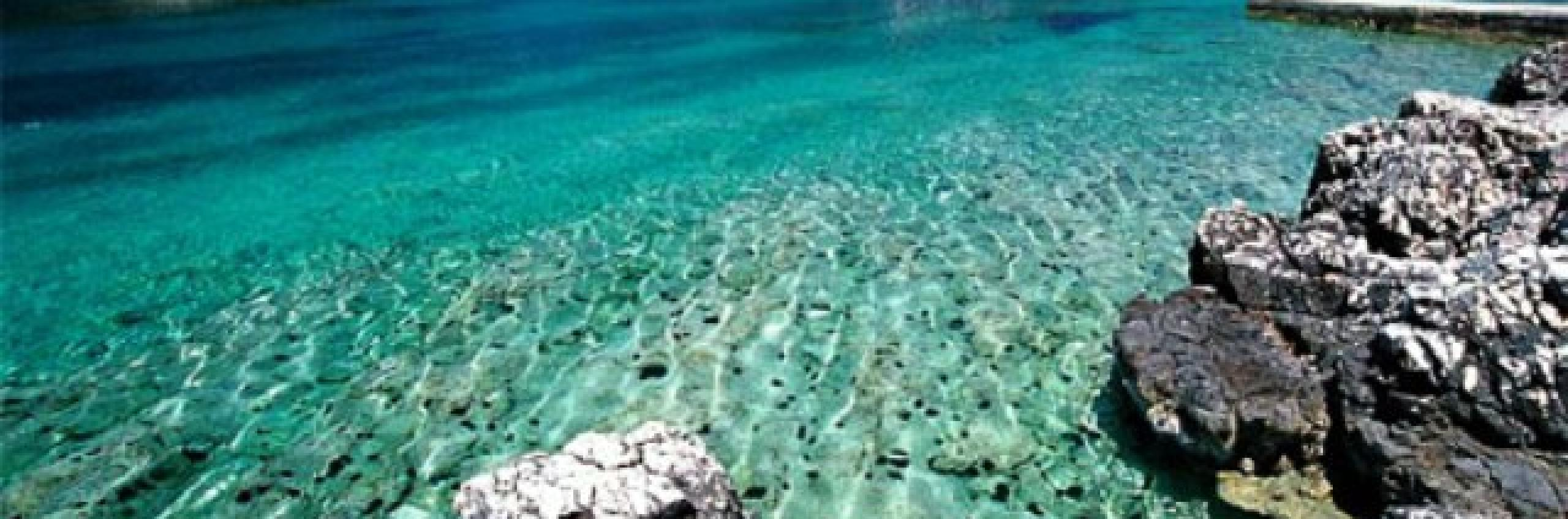 Palmižana beach
